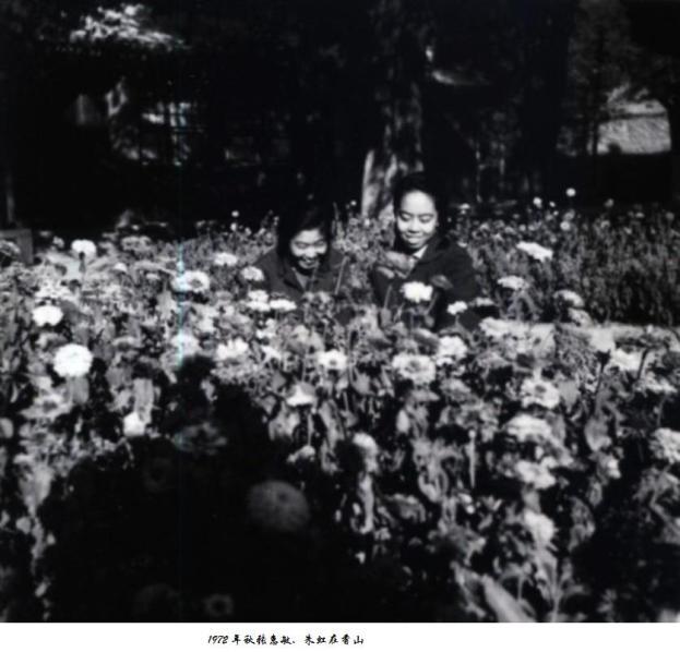 回眸三十余年前(二)——郎惠绵罗津晶耿小平唐宁韩化兵保存的照片 Download